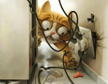 Животные гибнут в электроустановках